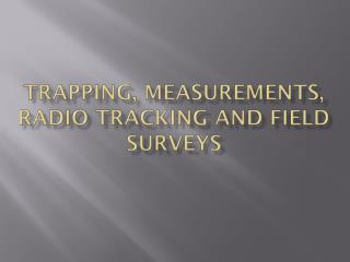 Trapping, measurements, radio tracking and field surveys