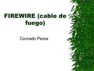 FIREWIRE (cable de fuego)