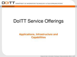 DoITT Service Offerings