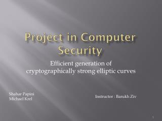 Project in Computer Security