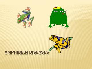 Amphibian Diseases
