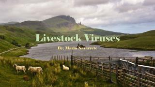Livestock Viruses
