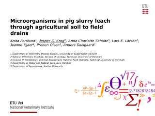 Microorganisms  in pig  slurry leach through agricultural soil  to  field drains
