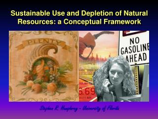 Sustainable Use and Depletion of Natural Resources: a Conceptual Framework