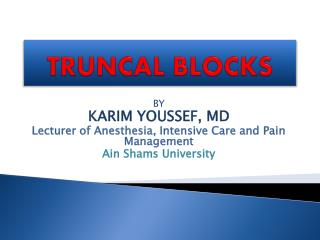 TRUNCAL BLOCKS