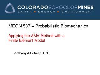 MEGN 537  � Probabilistic Biomechanics Applying the AMV Method with a Finite Element Model