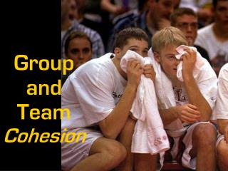 Group  and Team  Cohesion