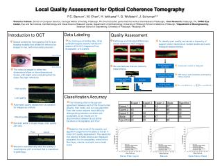 Local Quality Assessment for Optical Coherence Tomography