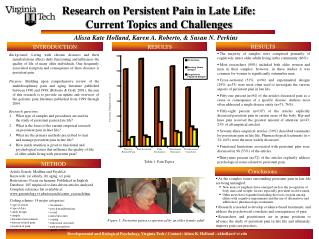 Research on Persistent Pain in Late Life:  Current Topics and Challenges