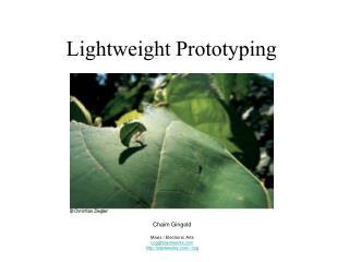 Lightweight Prototyping