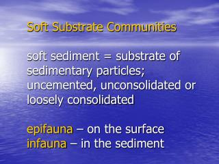Soft Substrate Communities  soft sediment  substrate of sedimentary particles; uncemented, unconsolidated or loosely con