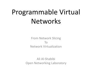 Programmable  Virtual  Networks