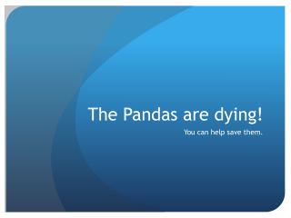 The Pandas are dying!
