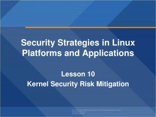 Security Strategies in Linux Platforms and Applications Lesson  10