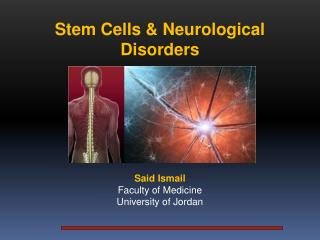 Stem Cells &  Neurological Disorders Said  Ismail Faculty of Medicine  University of Jordan