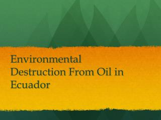 Environmental Destruction From Oil in Ecuador