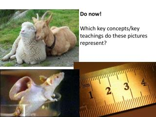 Do now! Which key concepts/key teachings do these pictures represent?
