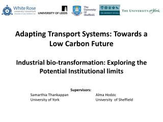 Adapting Transport Systems: Towards a Low Carbon Future