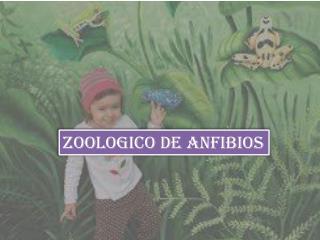 ZOOLOGICO DE ANFIBIOS