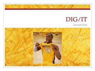 DIG/IT
