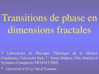 Transitions de phase en dimensions fractales