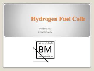 Hydrogen  Fuel  C ells