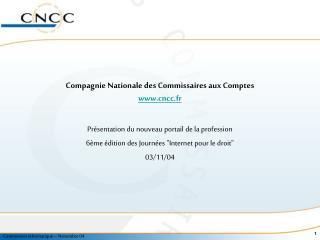 Compagnie Nationale des Commissaires aux Comptes cncc.fr
