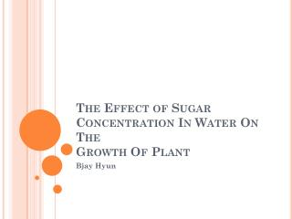 The  Effect  of  Sugar Concentration In Water On The Growth  Of Plant