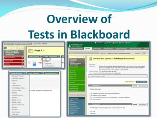 Overview of  Tests in Blackboard