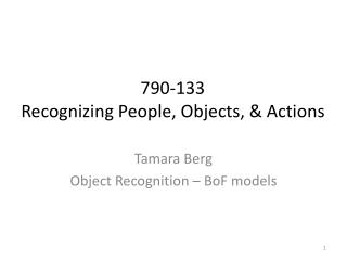 Tamara Berg Object Recognition –  BoF  models