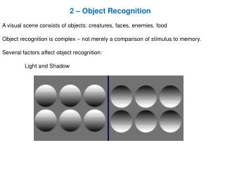 2 – Object Recognition A visual scene consists of objects: creatures, faces, enemies, food