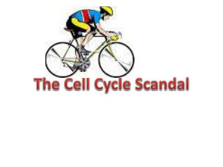 The Cell Cycle Scandal