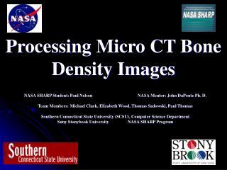 Processing Micro CT Bone Density Images
