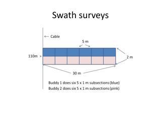 Swath surveys