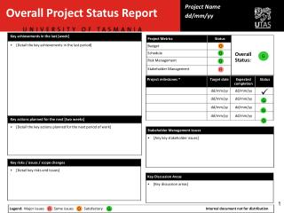 Overall Project Status Report