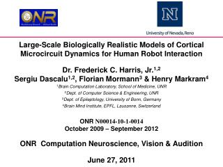 Large-Scale Biologically Realistic Models of Cortical