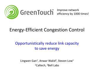 Energy-Efficient Congestion Control