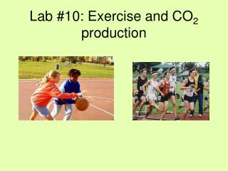 Lab #10: Exercise and CO 2  production