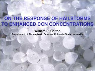 ON THE RESPONSE OF HAILSTORMS TO ENHANCED CCN CONCENTRATIONS  William R. Cotton