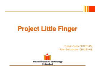 Project Little Finger