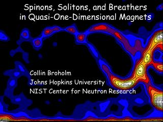 Spinons, Solitons, and Breathers  in Quasi-One-Dimensional Magnets