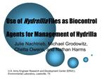 Use of Hydrellia Flies as Biocontrol Agents for Management of Hydrilla
