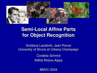 Semi-Local Affine Parts for Object Recognition