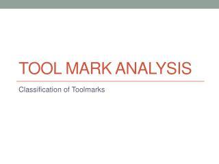 Tool Mark Analysis