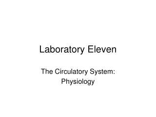 Laboratory Eleven