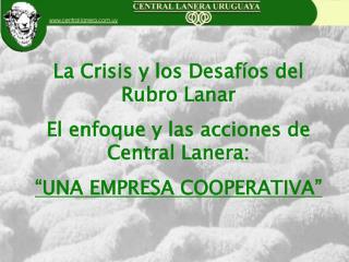 La Crisis y los Desafíos del Rubro Lanar El enfoque y las acciones de Central Lanera: