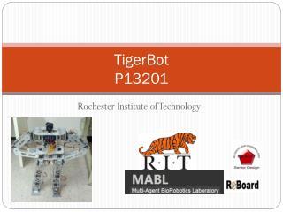 TigerBot P13201