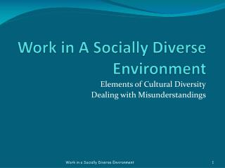 Work in A Socially Diverse Environment