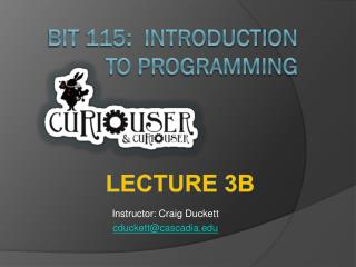 BIT 115:  Introduction  To Programming