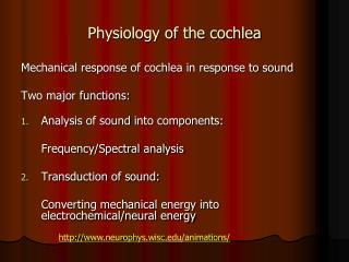 Physiology of the cochlea